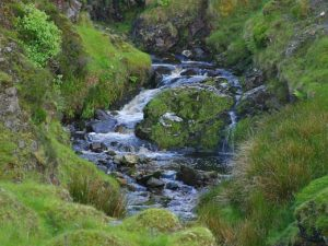 glengesh-pass-in-ireland-stream-brooks-water-moss_jeffrey-rich