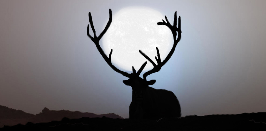 Reindeer in the Spiritual DNA