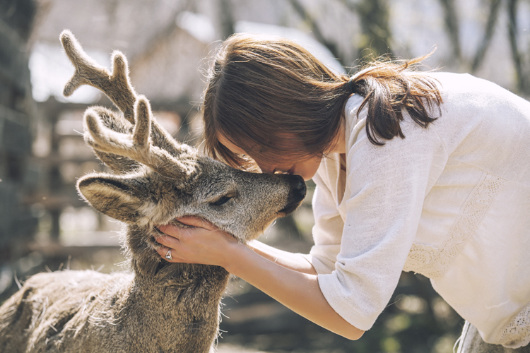 Retrieving Your Power Animal