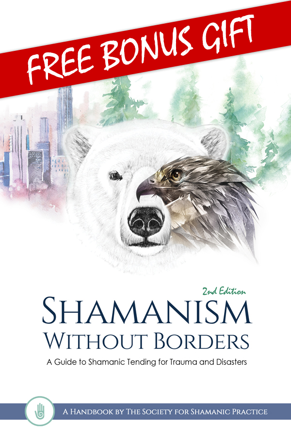 Shamanism Without Borders Book Cover