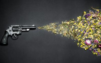 Tending to Gun Violence